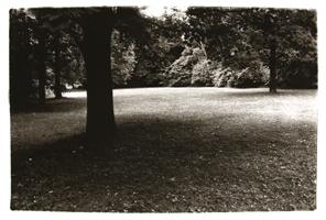 AMI: Park für Salamanca 4