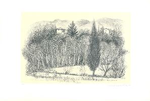 Christian de Moor: Campo in Valle