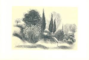 Christian de Moor: Tre cipressi