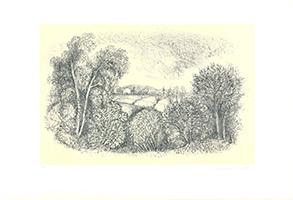 Christian de Moor: Alberi e campi
