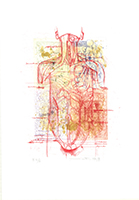 Hermann Nitsch: Körper