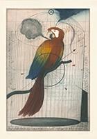 Alois Janak: Papagei