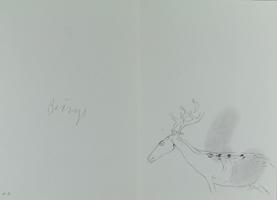 Joseph Beuys: ohne Titel (Hirschkuh)