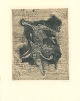 Johnny Friedlaender: Deux Oiseau I