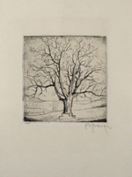 Frank Sepp: Baum