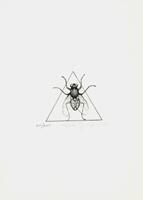 Elio Marchegiani: Dreieck mit Insekt