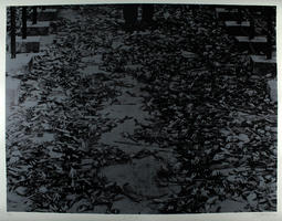 Wolf Vostell: T.E.K.