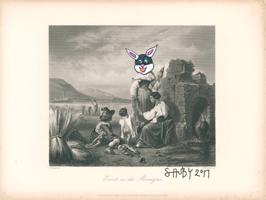 Shuby: Ernte in der Romagna Bunny