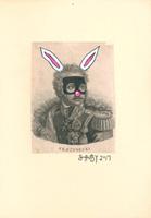 Shuby: Skrzynecki Bunny