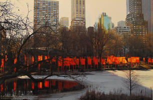Christo: The Gates - New York Central Park