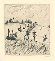 Josef Steiner: Landschaft