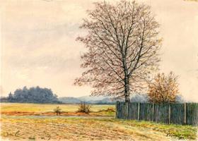 Krengel: Landschaft