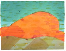 Willibrord Haas: Das orangefarbige Wesen
