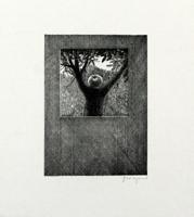Gottfried Wiegand: Vor meinem Fenster in einer Nussbaumgabel