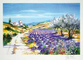 Ella Fort: Blühender Lavendel