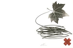 Antoni Tapies: Ahornblatt