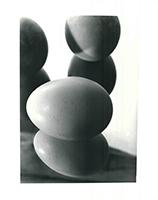 Hans Finsler: Eier im Spiegel