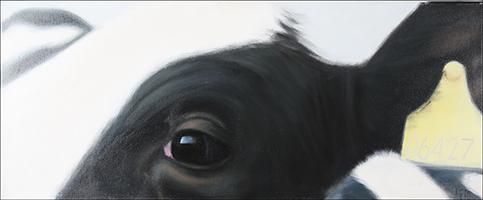 Proske, Hieronymus: Secret Eye