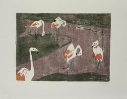 Hermann Teuber: Flamingos