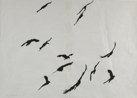 Ulla von Brandenburg: Vögel