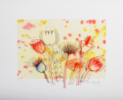Wilhelm Schlote: Flower Power