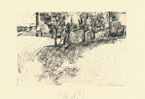 Peter Schnürpel: Landschaft