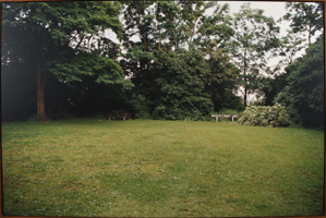 AMI: Park geheimnisvoll