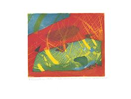 Willibrord Haas: Alle Herrlichkeit der Farben